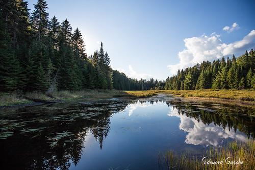 canada nature eau lac ciel québec nuages foret arbre amérique saintrochdemékinac