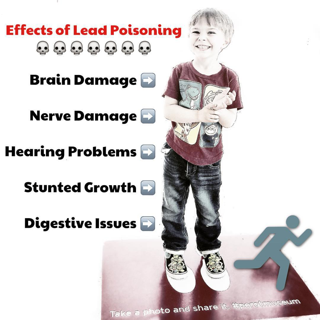 The Effects of Lead in the Water