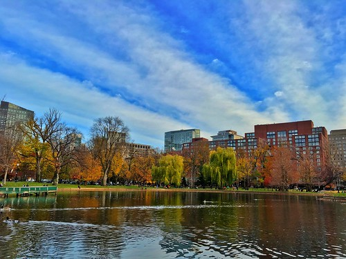 boston fallcolors massachusetts newengland eastcoast publicgarden pw bostonpublicgarden