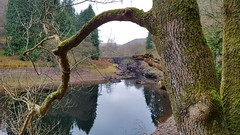A day out in the VW to the Elan Valley then onto Nant y Moch for a light lunch. Lovelyl day for December. Last visited Devils Bridge 31 years ago when me and Clive first started 'going out' together. 💑