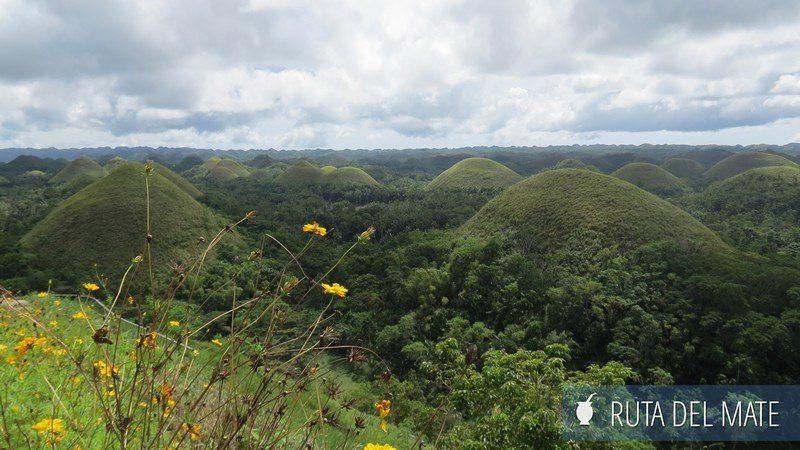 Chocolate Hills Filipinas (2)