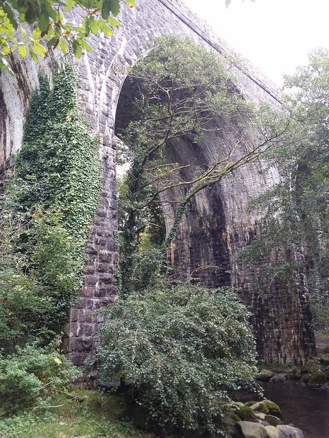 The Viaduct near Father Ford