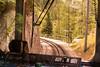 День 5. Ледник Мер-де-Глас - скалы, мостики, крутые обрывы и всё это в лесу, на склоне