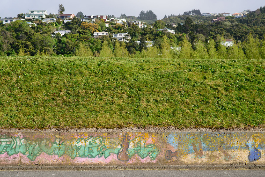 Graffiti, grass and Sidewalk!