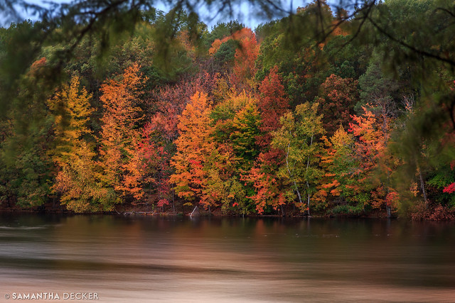 A Gorgeous Fall Palette on the Shore of Loughberry Lake