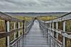 Follow that Photographer down the Wet Boardwalk_Anna Hergert_Moose Jaw_SK_Canada