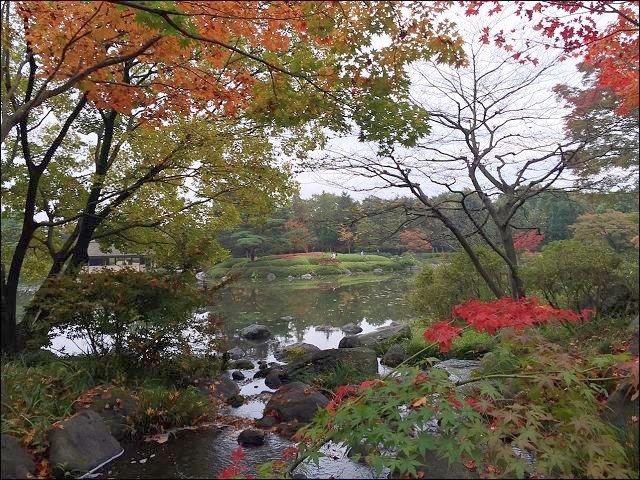 201511昭和公園_9854