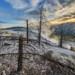 0562_USA_Yellowstone_May_12x copy by lomarot