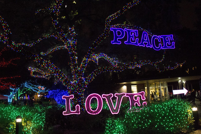 Zoo Lights_63