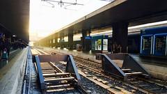 Leaving for new lands... #train #roma #termini #rome #station #dawn