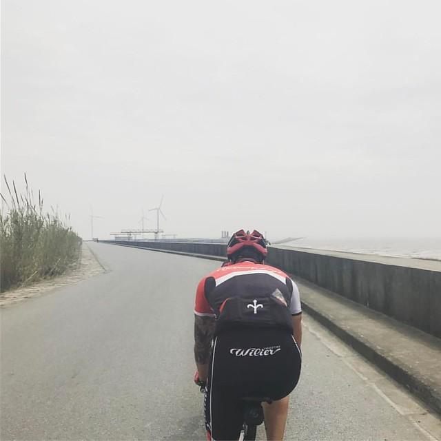 Windy, but fun trip to Dishui #ShanghaiCycling #ZaiShanghai