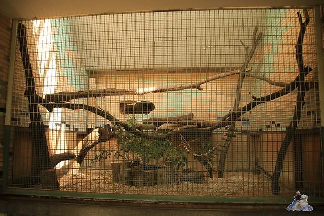 Tierpark Berlin 16.08.2015  0183