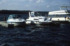 Hausboottour (179) Jabelscher See