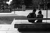 Street Portrait #58 - Couple by Alvimann