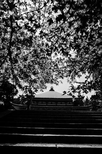 IMG_2938_LR__Kyoto_2015_09_04