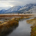 Genoa Hot Springs, NV by Chase538