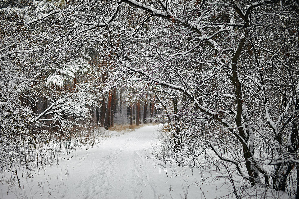 Тёплый снег 3