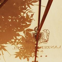 Best deli on a wine farm #lanzerac #silhouette #umbrella