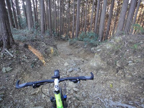 2015.12.19 Trail ~難易度高すぎる その2