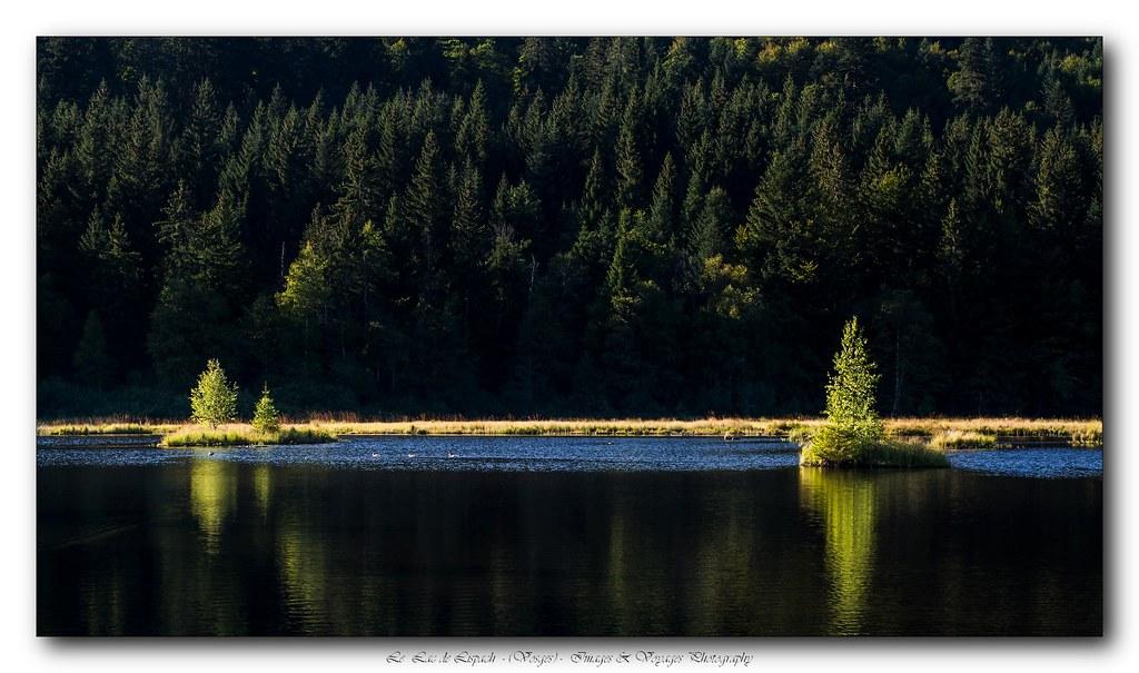 Lac de Lispach (Vosges) + ajout du jour 21625334960_67fa9ac8df_b