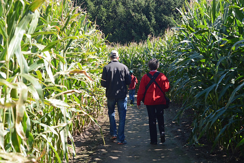 2015 Corn Maze