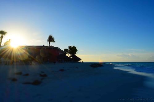 landscape island aruba shore tropics islandlife tropicallandscape tropicalsunrise arubanbeach