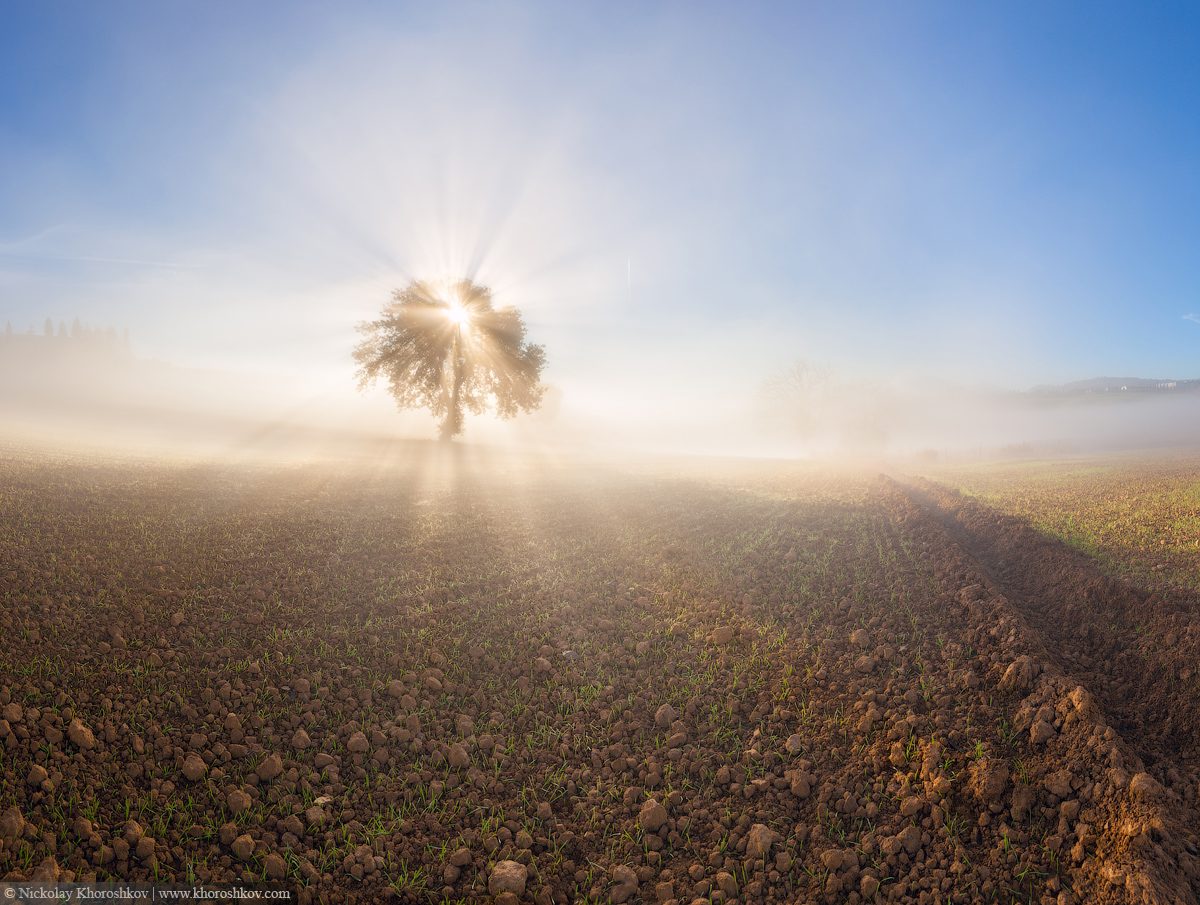 Panorama of sunny and foggy landscape