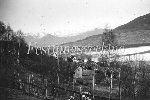 Voss Bergen distriktet (1205)