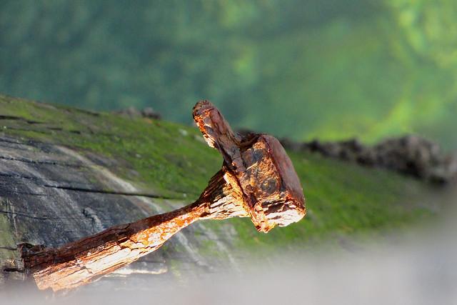 Rusty Spike on warf, Canon POWERSHOT SX1 IS