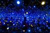 Denmark - Zealand - Louisiana Museum - Gleaming Lights of the Souls by Yayoi Kusama 01_DSC7249