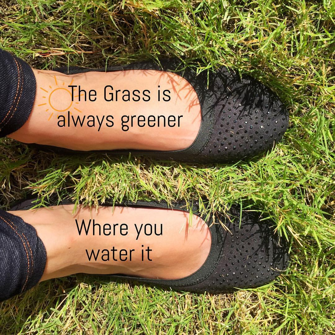 The grass is always greener meme