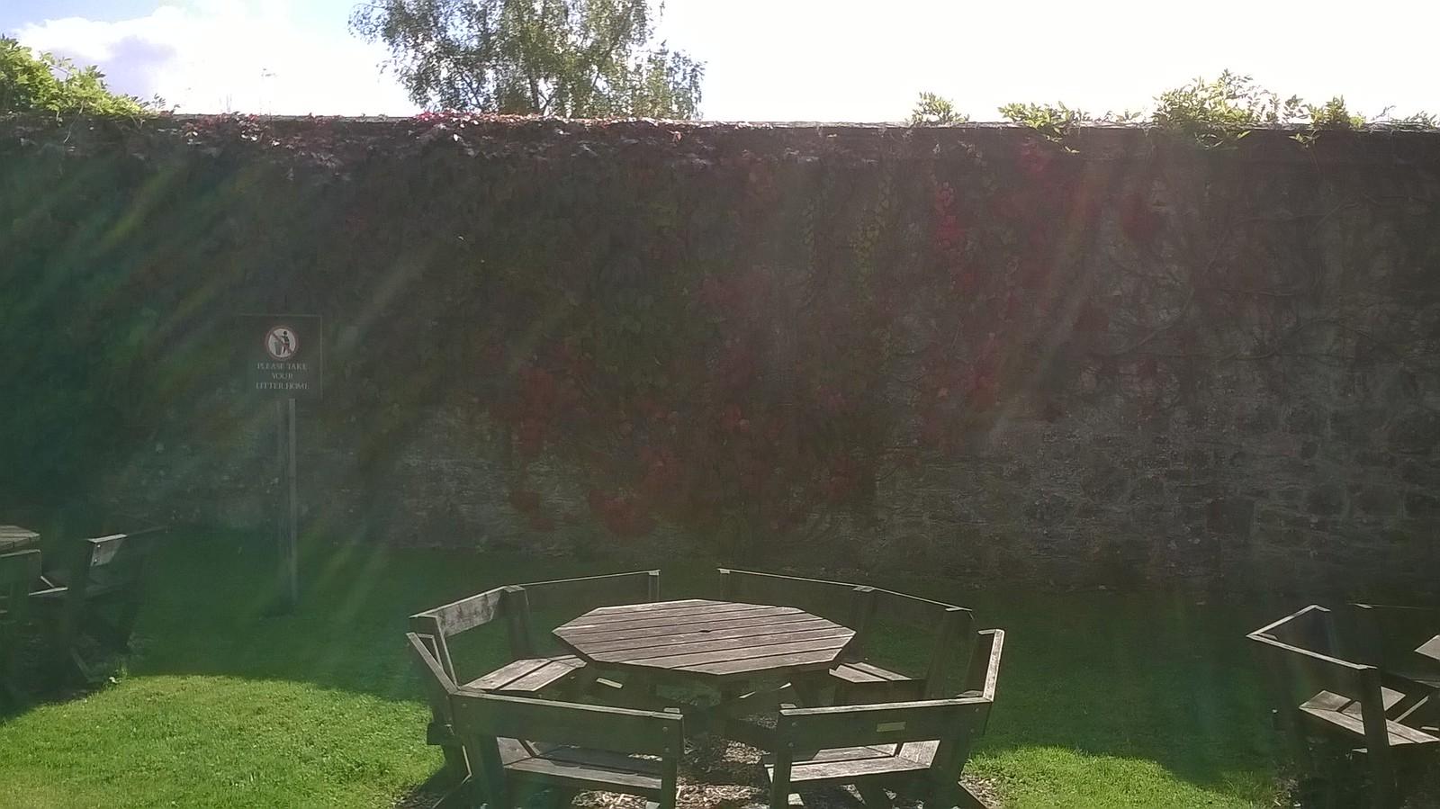 Hedge or wall? Ightam Mote picnic area