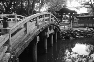 Kurume on OCT 27, 2015 (4)