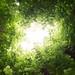 Hole in a green sky by Algot Foto