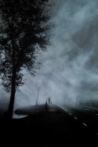 The Woman, The Dog And Twirling Fog