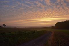 Petit matin dans l'est de la Somme