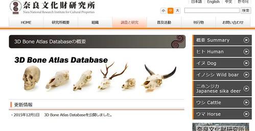 3DBoneAtlasDatabase