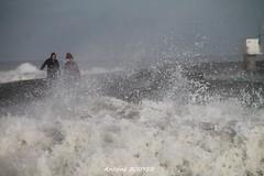 tempête 2013