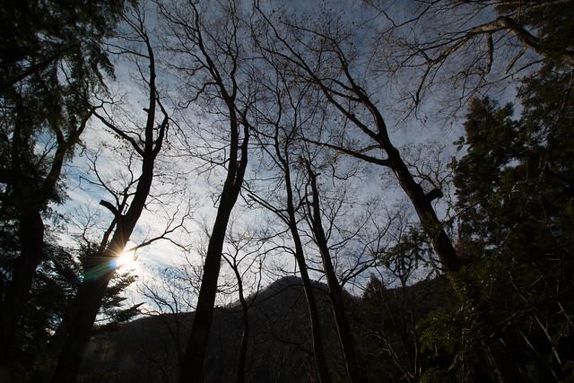 20160103-百蔵山-0185.jpg