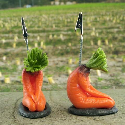 這就叫「噁心的可愛~」音波屋 - 【性感蘿蔔】玩偶系列!せくすぃ〜大根 & 人参