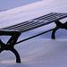 Bench 7D2_2202