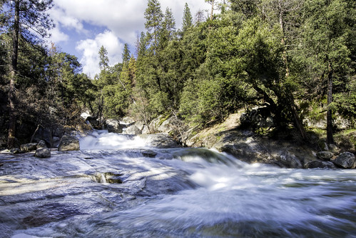 willowcreek basslake creek california clouds camping fishing landscape water nature nikond500 punahou77 pines sierras sierranevada stevejordan sierranationalforest wilderness