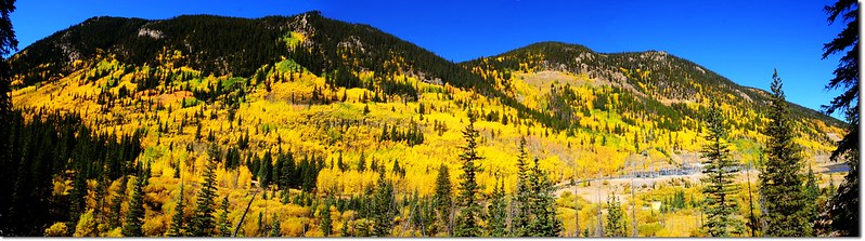 Fall colors at Guanella Pass, Colorado (2)