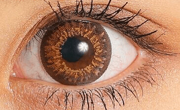 candymagic_1day_gossipbrown_eye