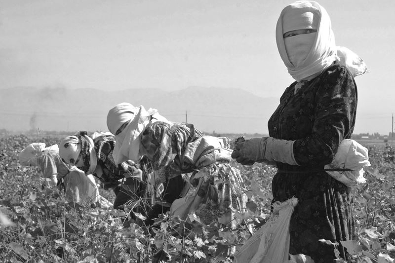 151017_UZB_cotton_collectors_BW_6x9
