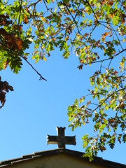 Chêne et croix - Photo of Sainte-Hélène