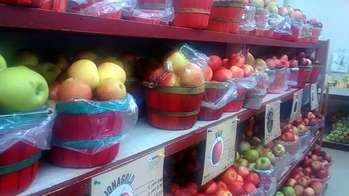 store pennsylvania orchard amish pa apples gala mennonite mountpleasantmills freshapples ionagold
