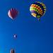 20110701_1915 - 0078 - Ashland Balloonfest 2011 - [Portfolio Export]