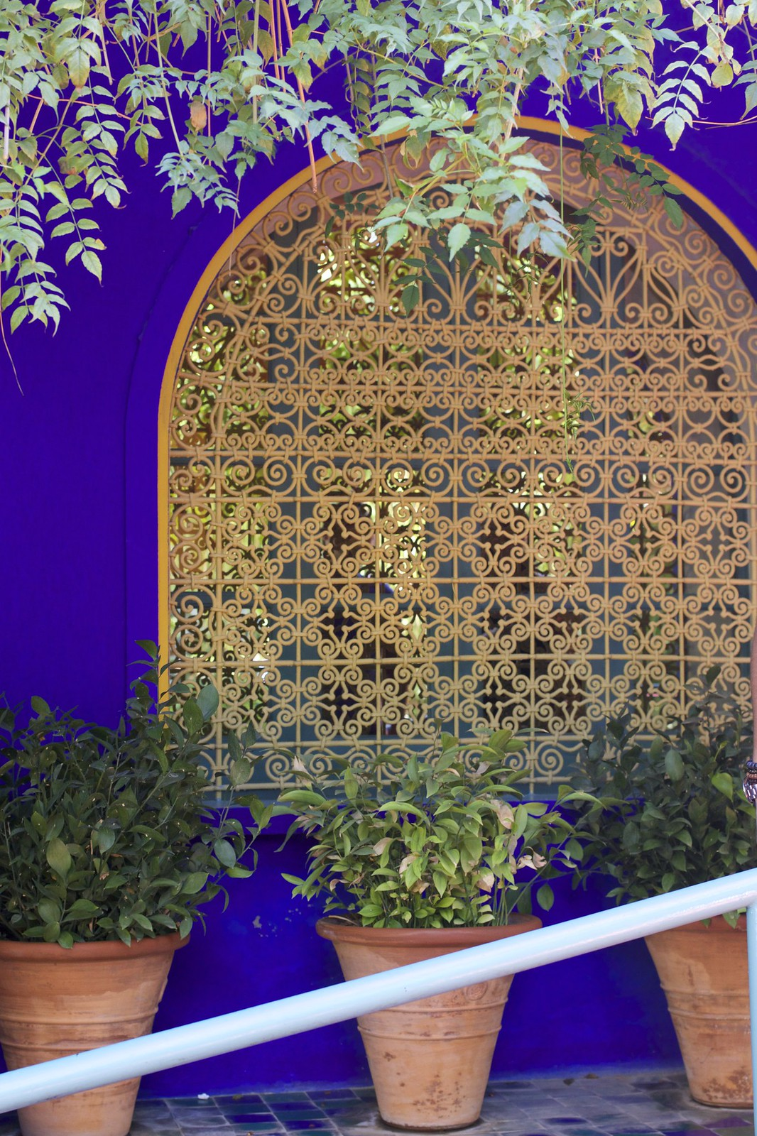 jardin-majorelle-marrakech-travel-blogger