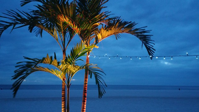 Marco Island Marriott. photo credit: SouthFloridaFoodandWine.com